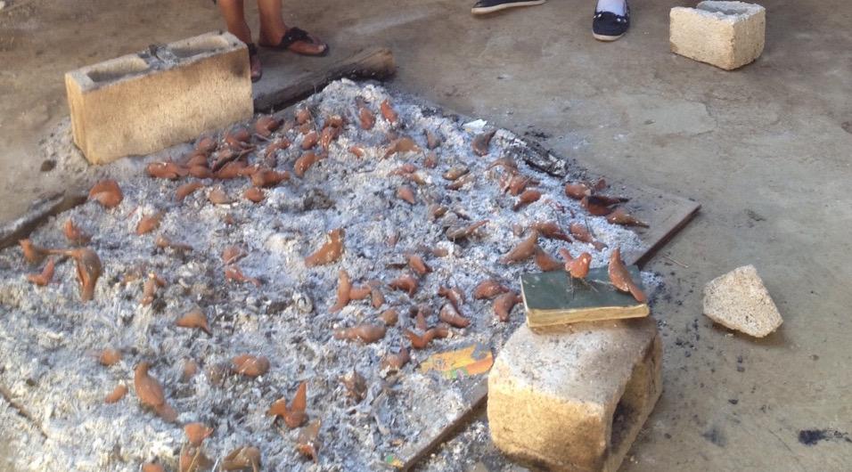 morales-birds-fire2.jpg